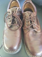 pashoes2
