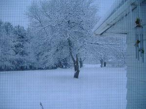 snowblog20142